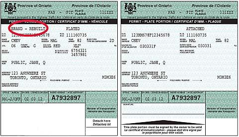 Car ownership paper